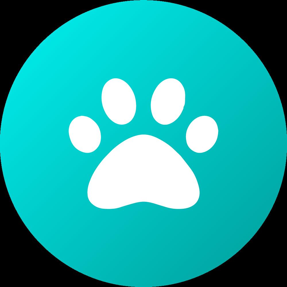 Aussie Dog Disc Blue Floating